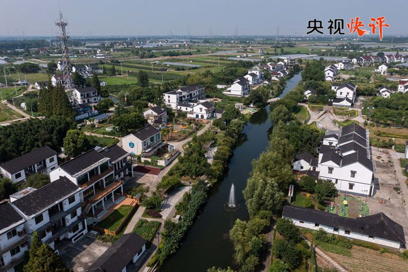 [CCTV Quick Comment] Promote common prosperity in high-quality development