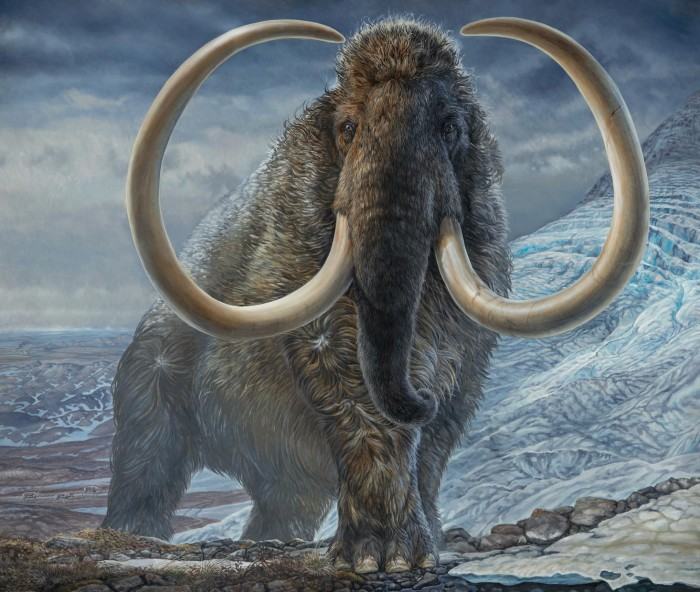 Startup company hopes to use gene editing technology to create mammoth hybrids by 2027