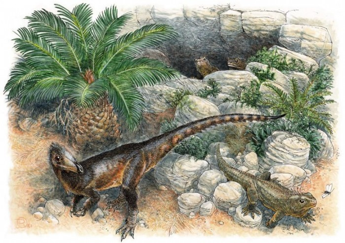 Scientists have discovered a new dinosaur species: it is the oldest carnivorous dinosaur found in Britain