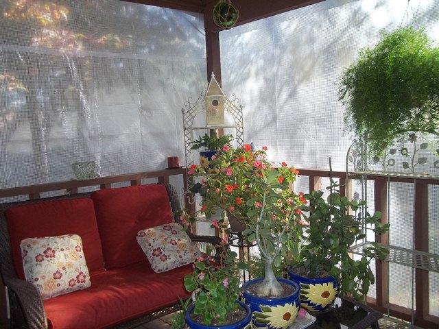 clear heavy duty greenhouse tarps
