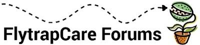 Flytrapcare forums