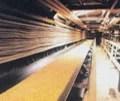 Oil-Resistant-Conveyor-Belt