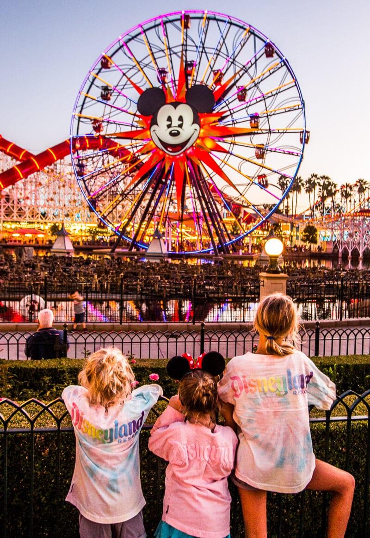Disneyland Park Hopper Tickets
