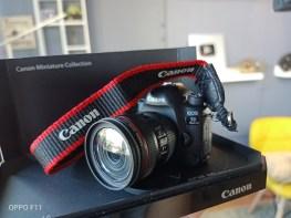 OPPO-F11-rear-camera-shots (6)
