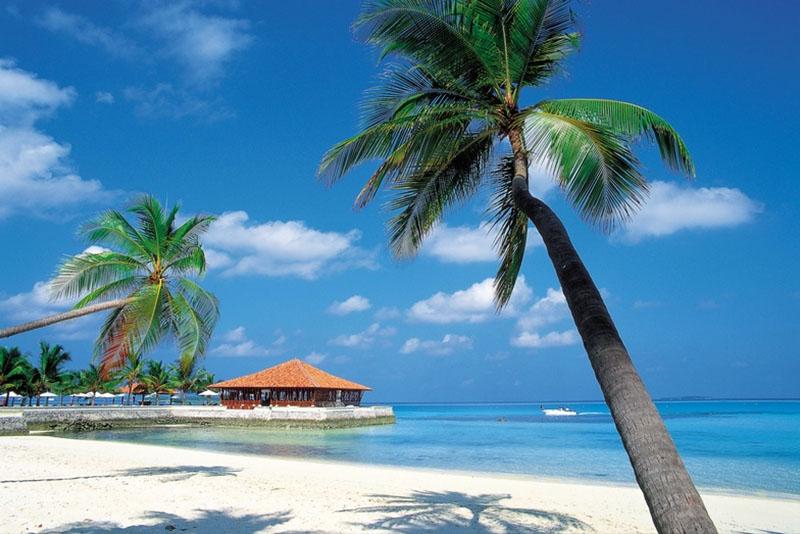 Travel Agencies for honeymoons in Yuma