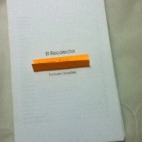 El Recolector 2 (2)