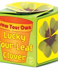 Grow Your Own Lucky Clover