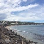 2014年1月 レユニオン島 現地レポート3日目