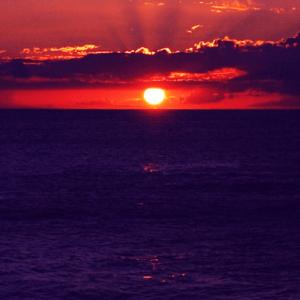 観覧車から夕日が眺められる