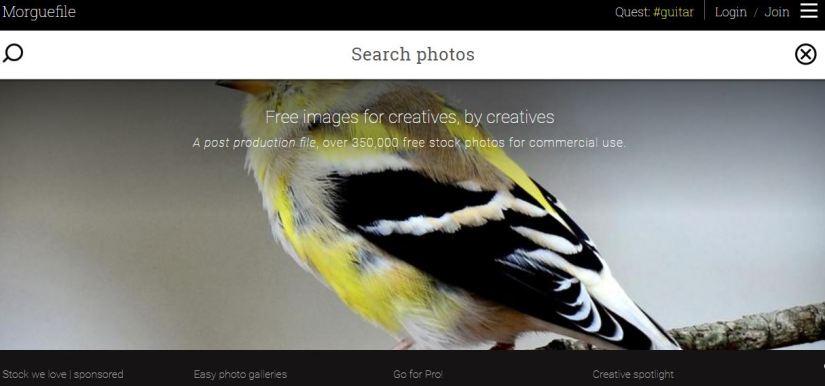 Situs penyedia foto gratis berkualitas
