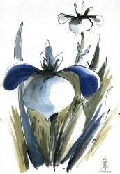 Nezu-garden-1800