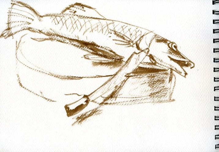 Sittwe-le-marche-1-1800