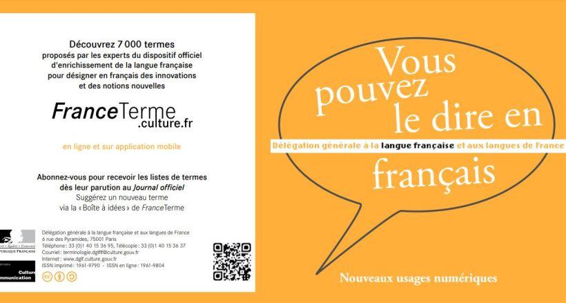 Vous pouvez le dire en français