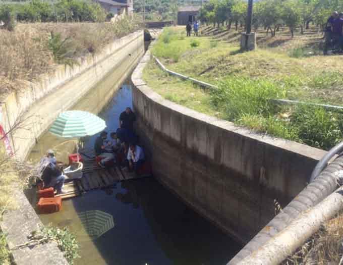 Campagna irrigua. Consorzio bonifica Catania: lunedì assemblea dei dipendenti