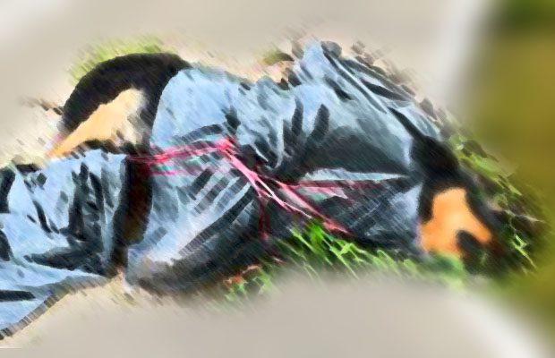 Santa Maria di Licodia, cane morto in una busta dell'immondizia