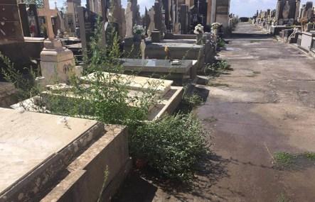 adrano_degrado_cimiteri_15_09_2017_03