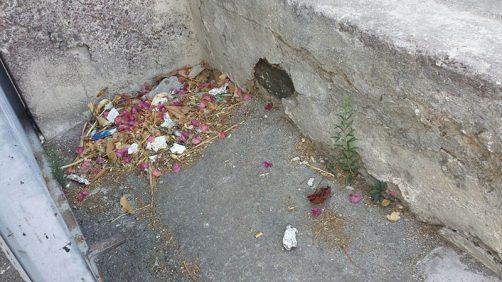 paternò_degrado_cimiteri_04_09_2017_03