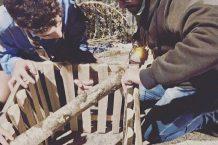 scout_licodia_cestini_panoramica3