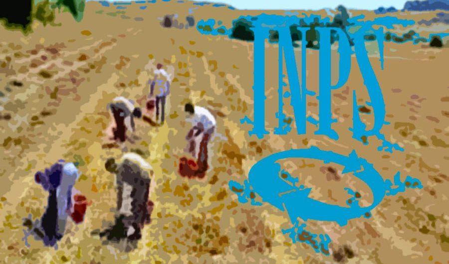 Circolare Inps: lavoratori agricoli di aziende non agricole saranno inquadrati nella contribuzione unificata