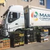 marino_corporation_10_04_2020_01