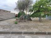 belpasso_parco_urbano_25_06_2020_011