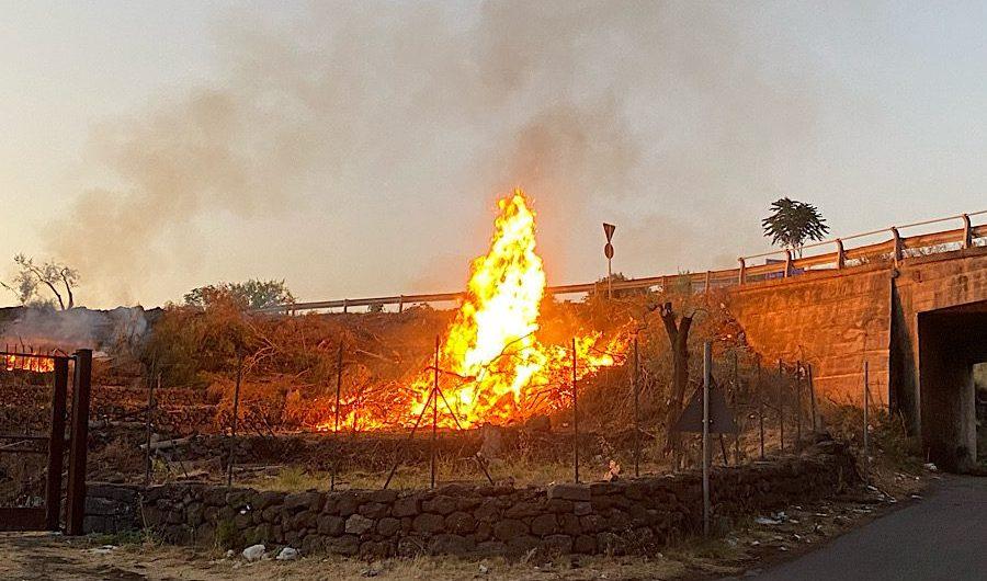 Santa Maria di Licodia. Incendio all'interno di un terreno agricolo