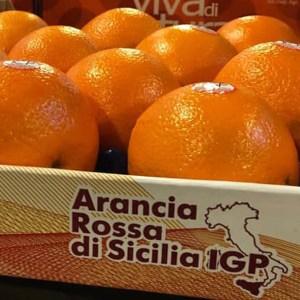 """""""Nuovi scenari"""" per l'Arancia rossa, giovedì convegno a Caltagirone"""