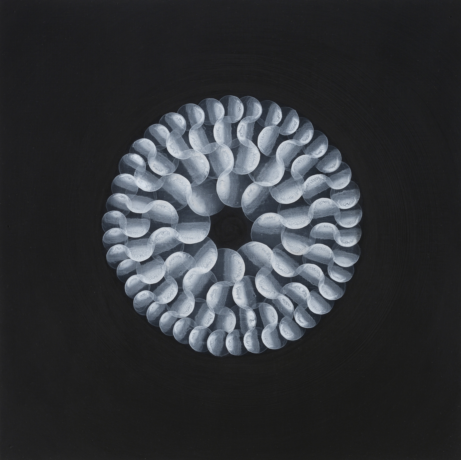Yvonne Behnke white on black painting cercles form a geometric 3D illusion kinetic