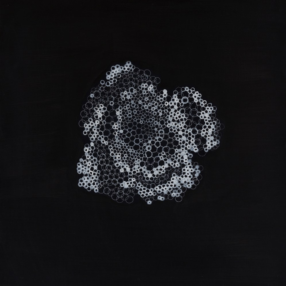 Yvonne Behnke white on black painting biomorph