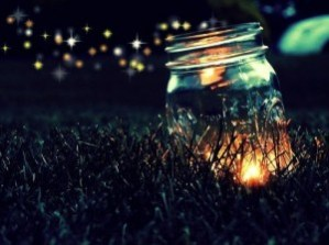 firefly jar