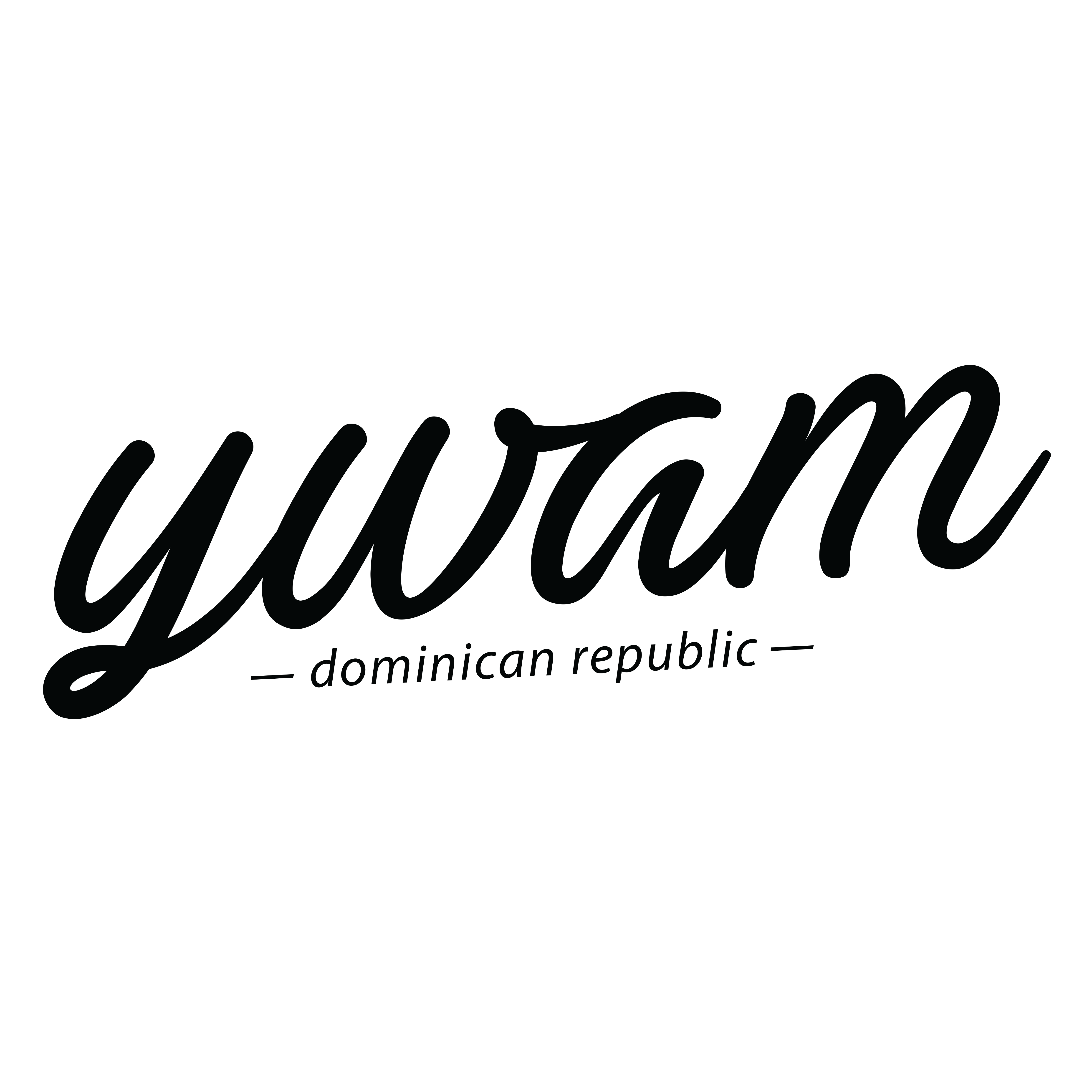 YWAM Dominican Republic Logo