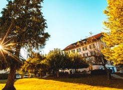 Finding Purpose at YWAM Lausanne