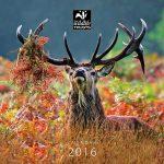 Wildlife Trust 2016 Calendar