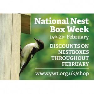 Nestbox Week_shop