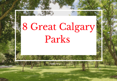 8 Great Calgary Parks that you may have missed