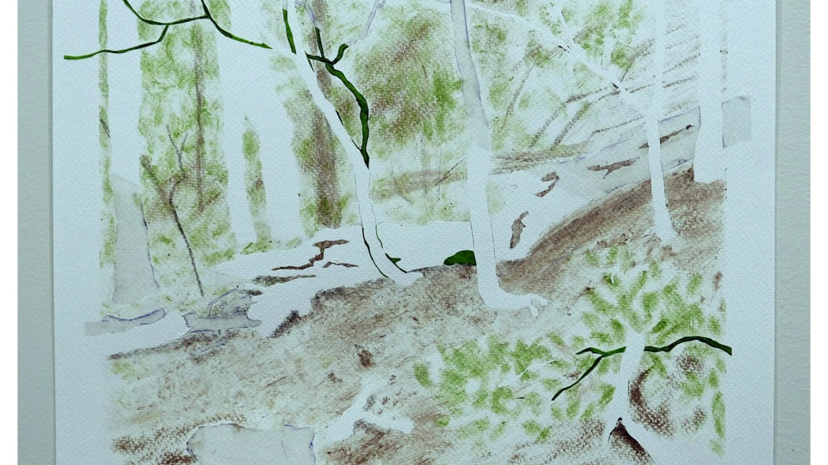 Andrzej Tarasiuk: Broken Trees