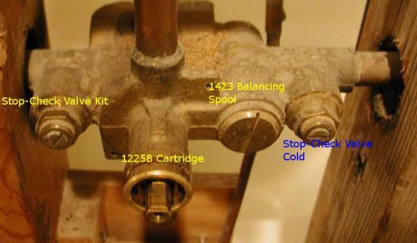 moen shower faucet provides no cold