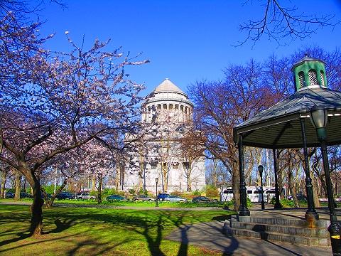 NY- Sakura Park Cherry Blossoms, Grants Tomb