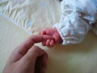 子供の手と自分の手