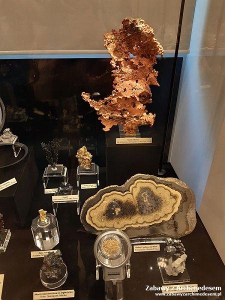 Kolekcja Rektorska