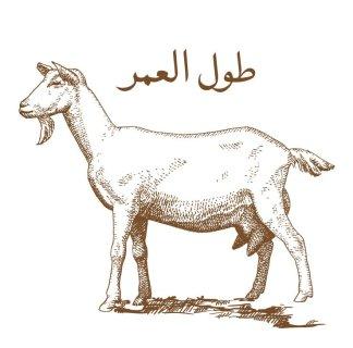 Aqa Moula Niyat Goat
