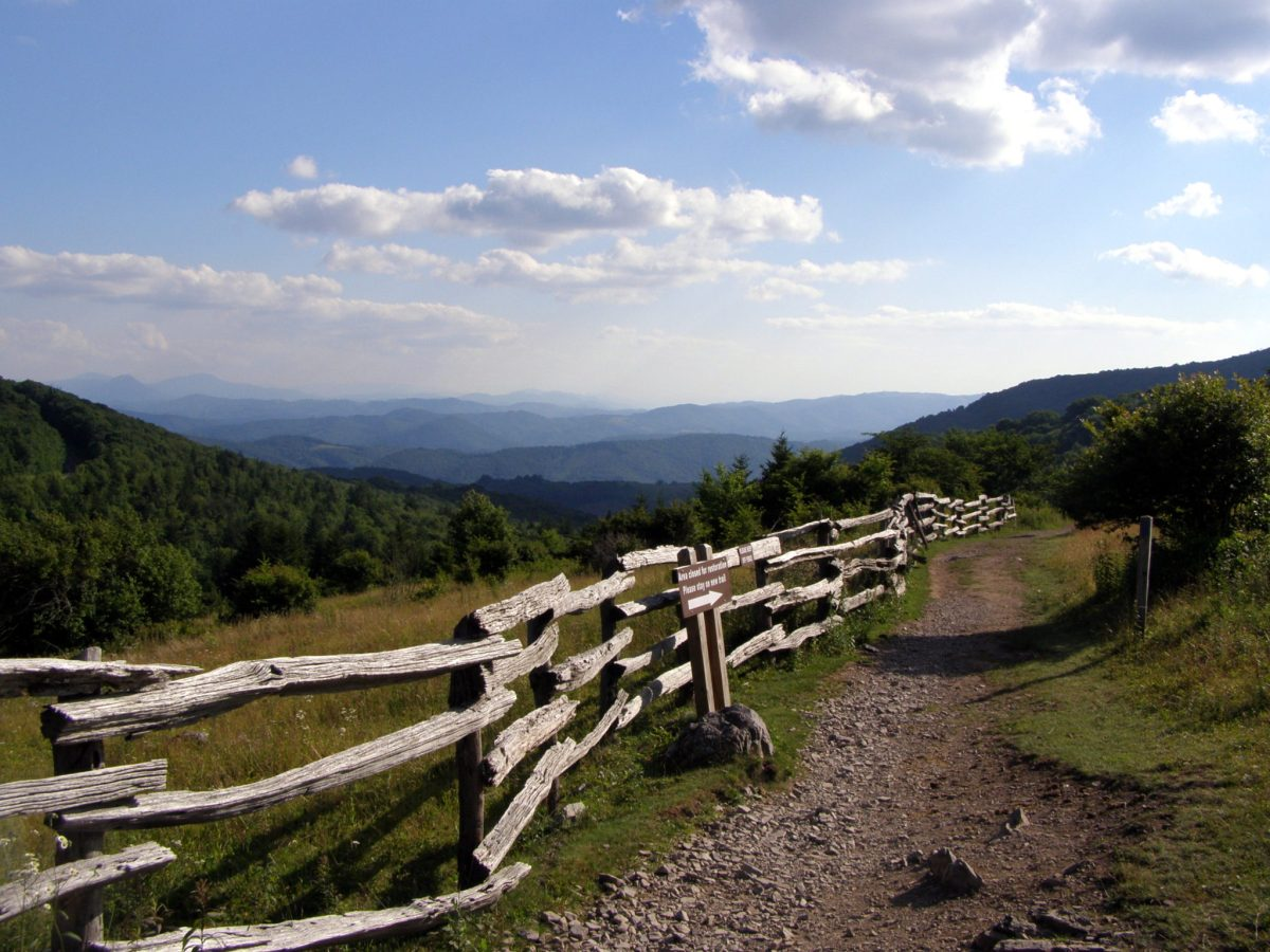 Pine Mountain and Wilburn Ridge - Mount Rogers National Recreation Area, VA