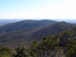 South view of Cook's Wall - from Moore's Knob