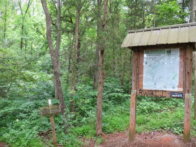 Birkhead Mountains Wilderness trail information and maps