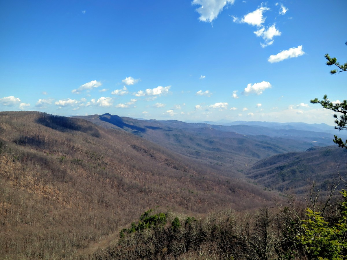 Woods Mountain - Pisgah National Forest, NC