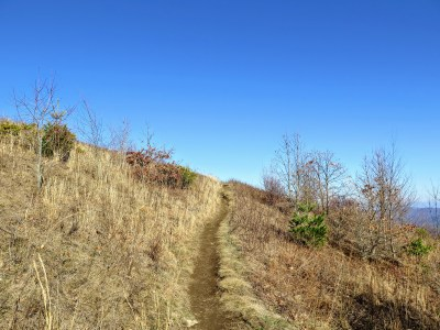 Appalachian Trail leaves the forest behind