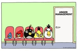 Anger management angry birds