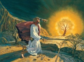 Moses Burning Bush Crazy Bible Story