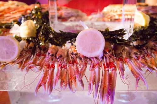 cm-seafood-close-up