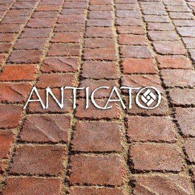 anticato